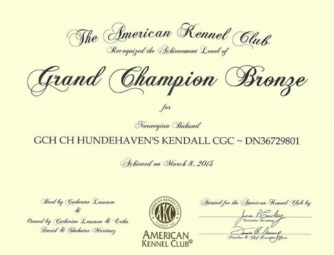AKC Bronze Grand Champion Buhund