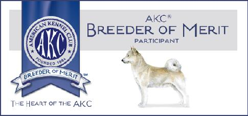 Norwegian Buhunds - Breeders of Merit